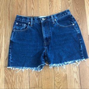 Express Bleus Denim cut off shorts